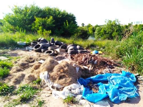 E o mosquito da dengue? Leitor flagra descarte irregular de pneus em Linhares