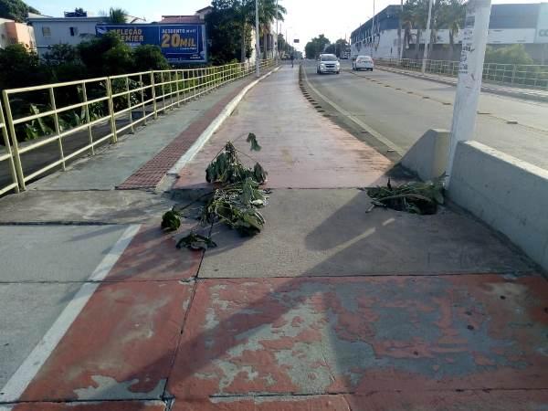 Morador do Interlagos mostra situação de ciclovia na 'Ponte Nova'