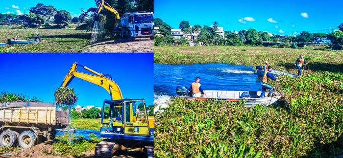 Mais notícias da Lagoa do Meio: PML remove plantas aquáticas