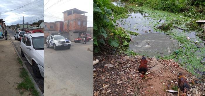 Notícia 2: Galinhas se alimentam ao lado de corpo encontrado na Lagoa do Interlagos