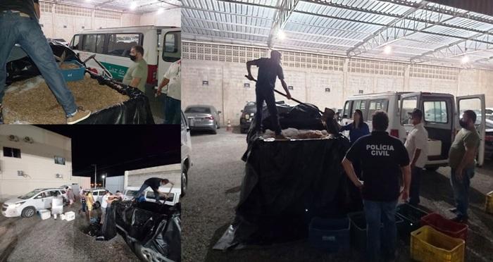 800kg de camarão apreendido são doados à instituições de caridade em Linhares