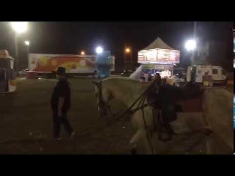 Cavalo não deixa dono dançar no Forró Pontal 2016